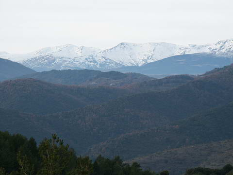 Pyrenean mountains